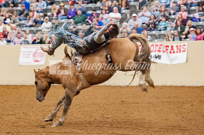 rodeo-2891