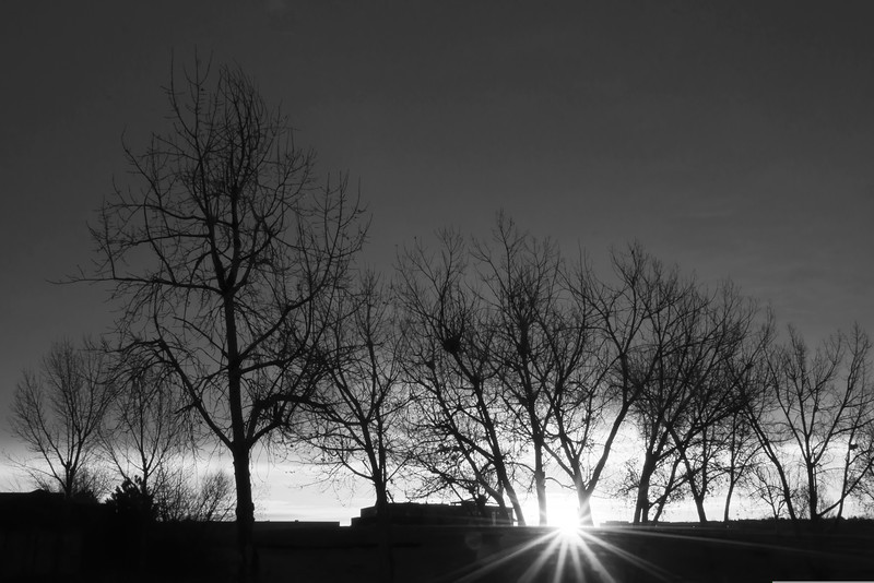 Greensview Sunrise b&w