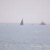 Half Sail - Dang!
