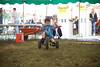 Berges Fest 2015 (Sun)  141