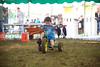 Berges Fest 2015 (Sun)  142