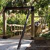 2015 Bohemian Shoot, Dickson Azalea Park, Orlando,  Florida - 13th December2015 (Photographer: Nigel G Worrall)