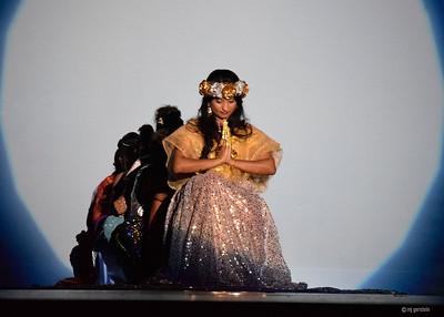 India Festival 002