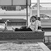 Bon Om Touk 2019_Phnom Penh_Cambodia_10_Nov_2019_795