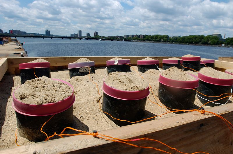 Mortars stuffed with sand and fireworks sit ready for Boston's Fourth of July celebration in Boston, Saturday, July 3, 2004.