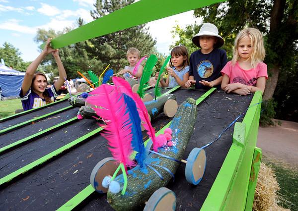 2013 Boulder Creek Hometown Festival