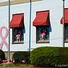 """October 26, 2014<br /> <br /> The Girls Need Our Support...........<br /> <br /> Even the United States Post Office supported """"Breast Cancer Awareness Month."""" I didn't get a full shot of the building because there were cars coming behind me as I stopped briefly to take this pic.<br /> <br /> United States Post Office<br /> 100 W Percy St<br /> Indianola, MS"""