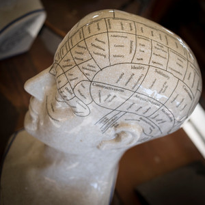 Lots of phrenology figures at this spring show.