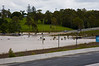 Brisbane-Floods-2011-0019