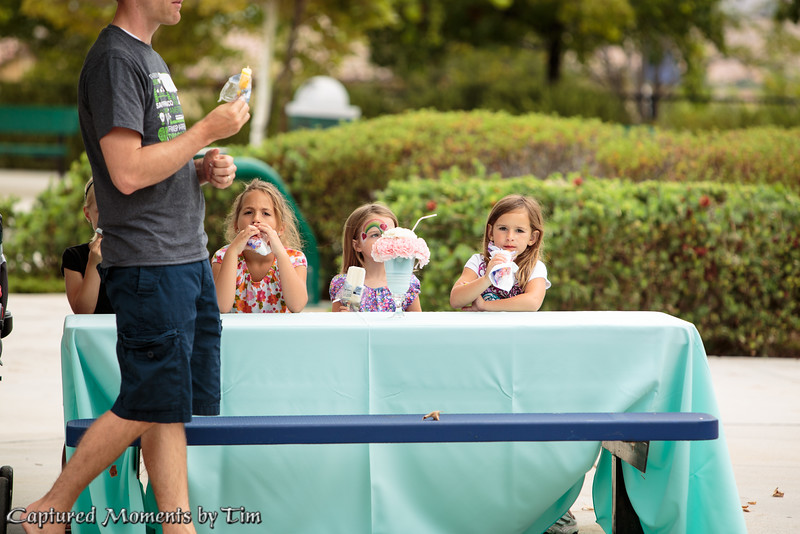 Brookfield Ice Cream Social_20150627_040