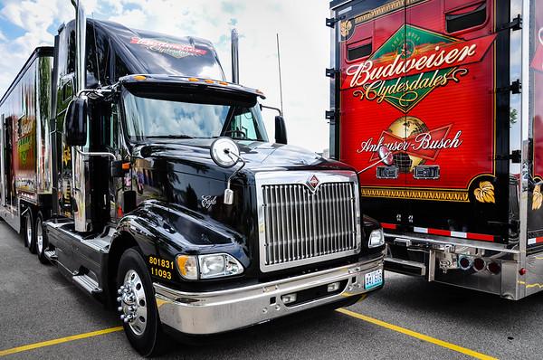 Budweiser Clydesdales Trucks