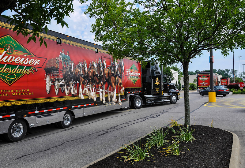 Budweiser Clydesdales Transportation