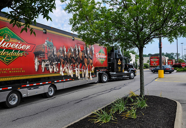 Budweiser Clydesdales Transportation