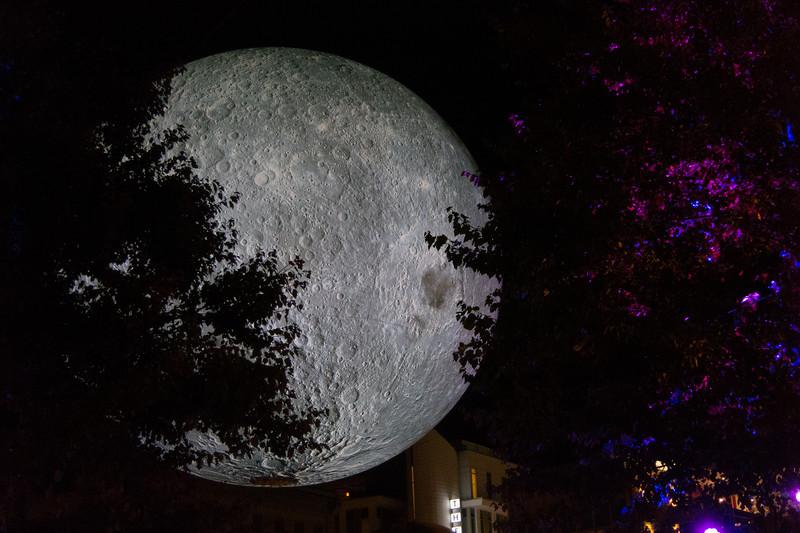 00aFavorite 20191102 (2058) 'Bull Moon Rising' installation, Durham NC (image by Dilip Barman)