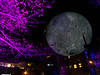 20191102 (2055) 'Bull Moon Rising' installation, Durham NC (image by Dilip Barman)