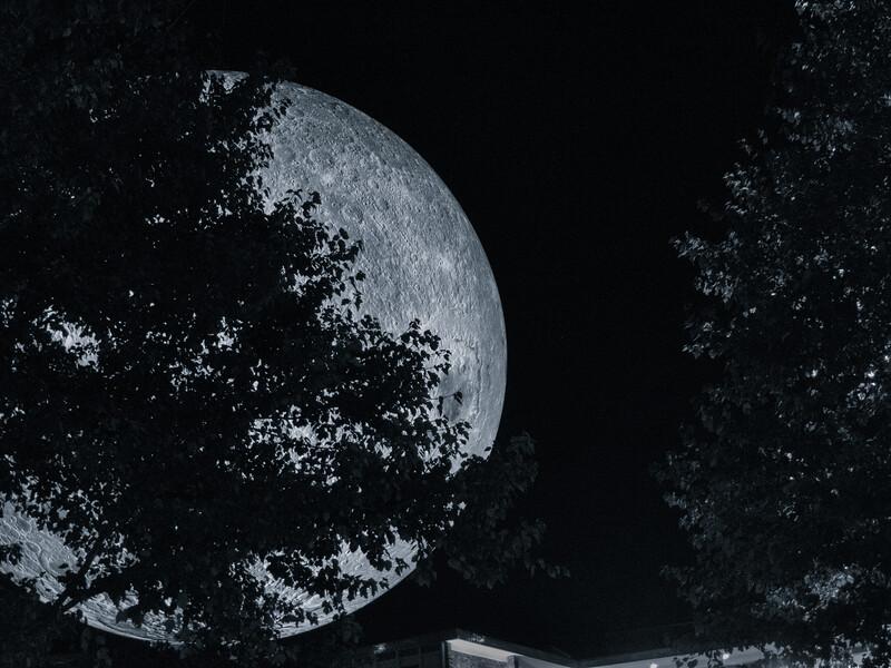 20191102 (2058) 'Bull Moon Rising' installation, Durham NC (image by Dilip Barman)