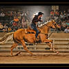 20x30_Horse copy