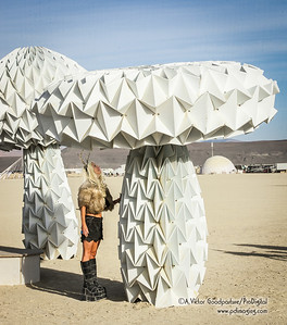 Shrumen Lumen is made almost entirely of paper/cardboard. As a person stands underneath it. . .