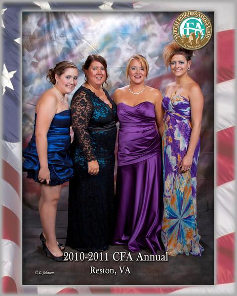CFA 11-028