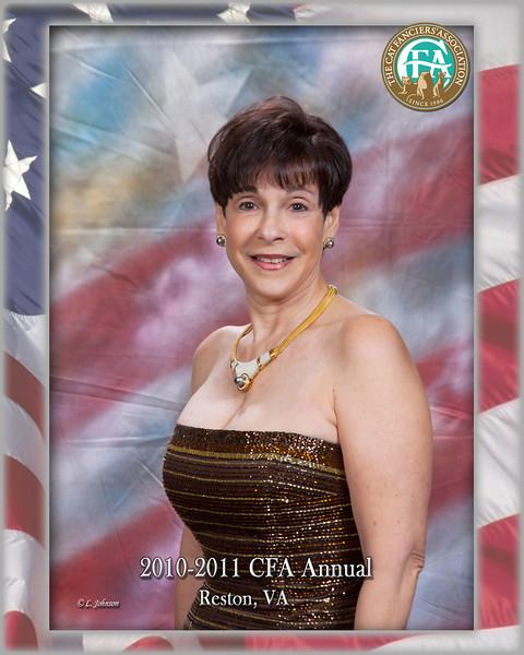 CFA 11-013