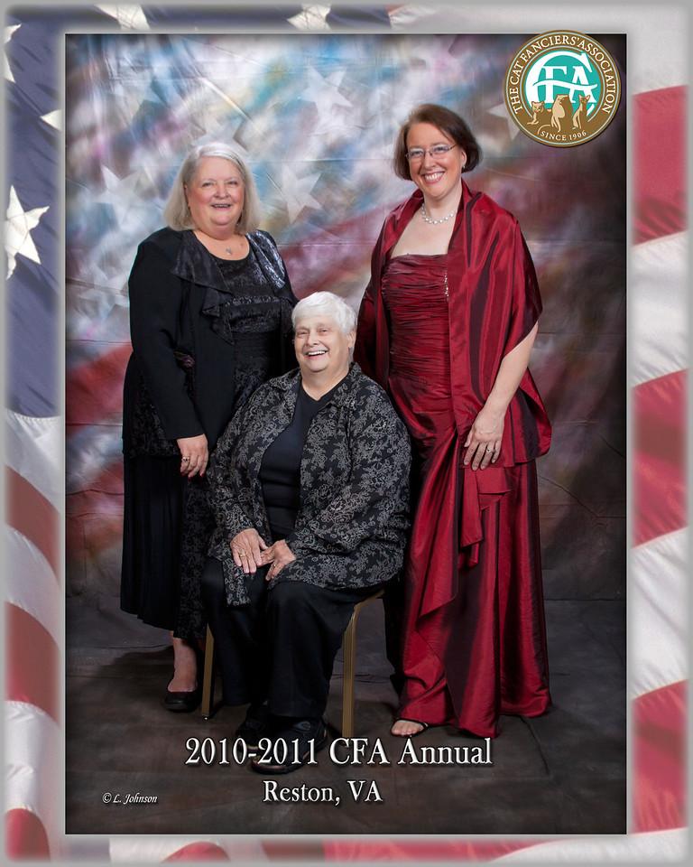 CFA 11-023