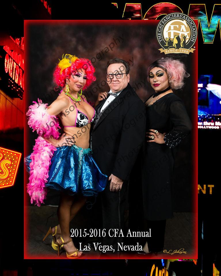 CFA Annual 16-041-O