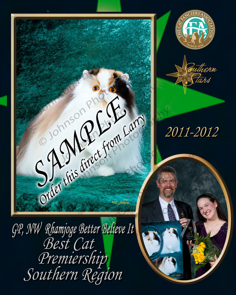 Award Plaque VV2 (SR) Sample