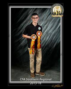 CFA SR 16-065-O