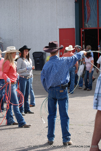 YOUNG ROPERS