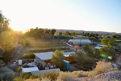 Quail Hollow Farm CSA located in Overton, NV in Moapa Valley 50 miles northeast of Las Vegas in this picture