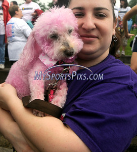5/8/2010 Mike Orazzi | Staff Diane Walczok holds her seven-year-old pink poodle Lacey during the Connecticut Race In The Park at Walnut HIll Park in New Britain on Saturday morning.