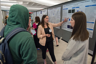 The 2nd Annula Celebration of Undergraduate Research and Creative Activity at Westfield State University
