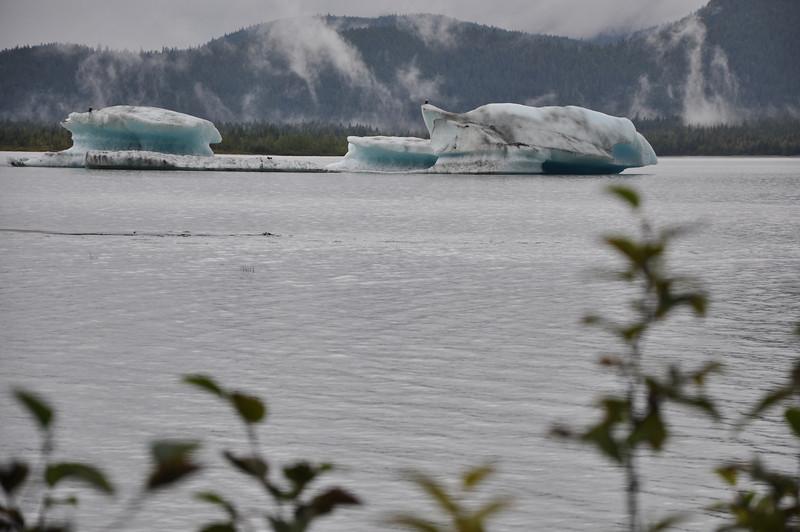 Juneau, AK - 2013<br /> Credit: Richard Parke
