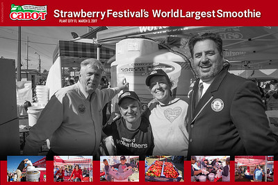 strawberry festival cover