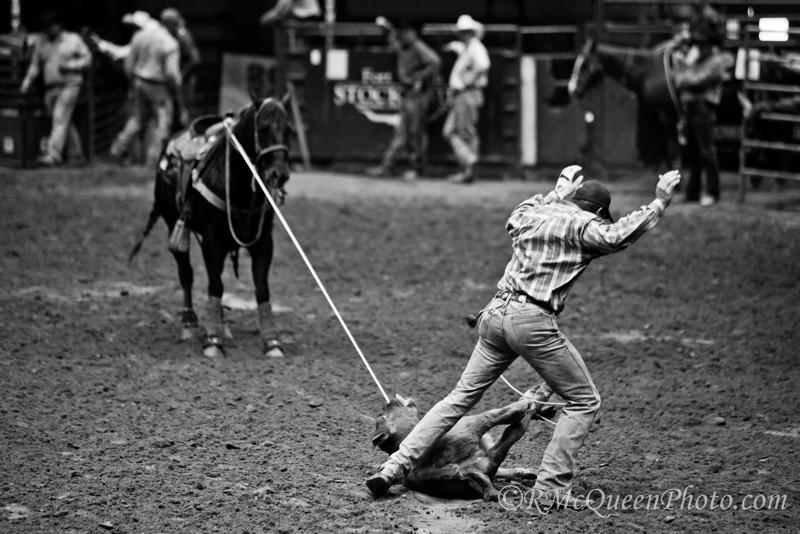 Calf Rope-5738