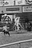 Calf Rope-5552