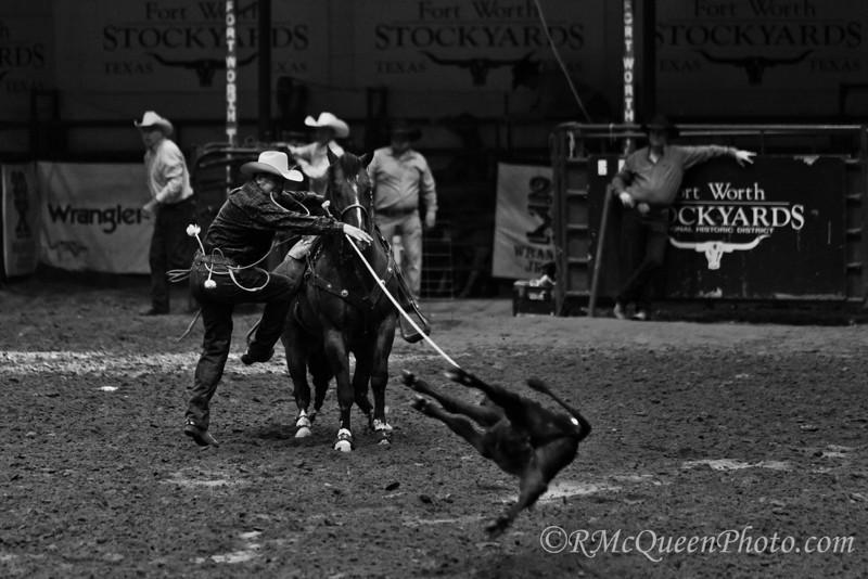 Calf Rope-5645