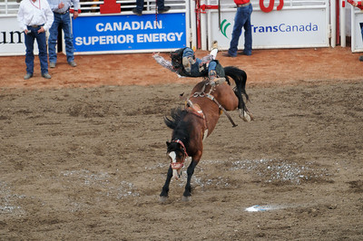 Calgary Stampede Rodeo  July 2008