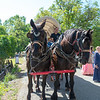 2me134-2019-05-04 Coloma Pioneer Day -0415