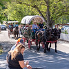 2me173-2019-05-04 Coloma Pioneer Day -8474