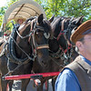 2me136-2019-05-04 Coloma Pioneer Day -0417