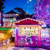 Cambria Christmas Market_023