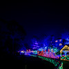 Cambria Christmas Market_029