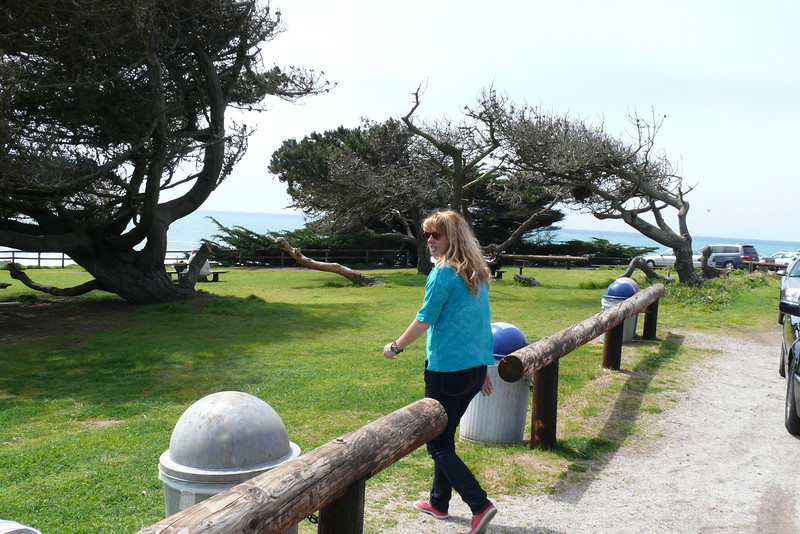 Entrance to a state park in Cambria