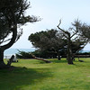 a state park in Cambria- possible ceremony site
