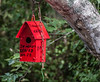 • Blue Heron River Tours<br /> • A red birdhouse we saw on our boat ride