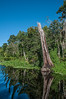 • Blue Heron River Tours<br /> • Reflection scenic photos