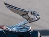 • Dade City Car Show<br /> • Hood ornament