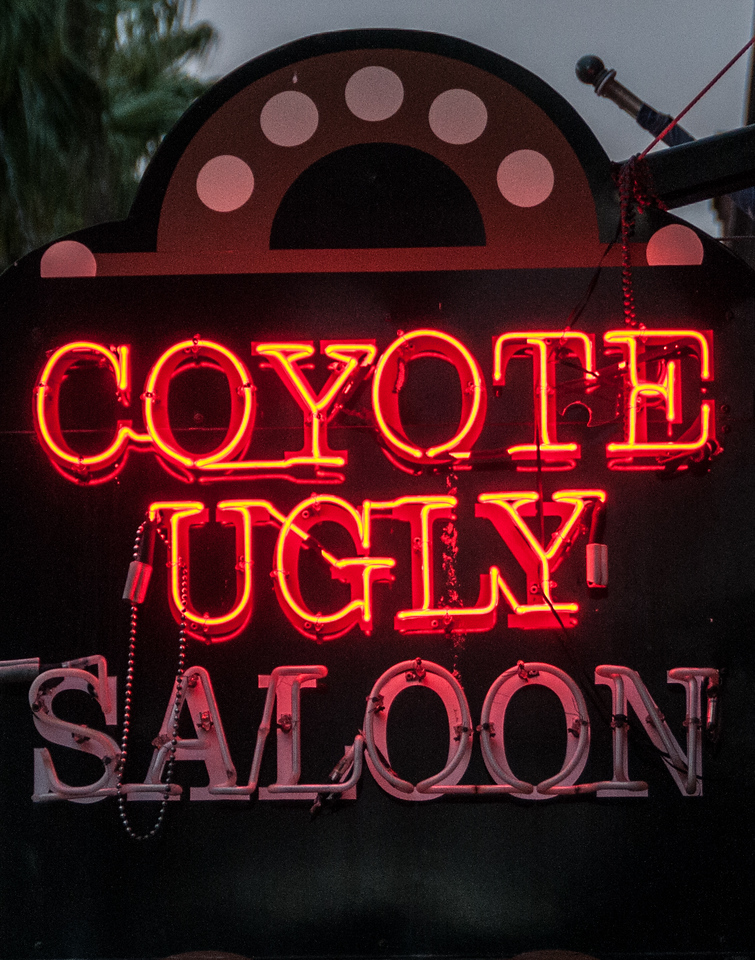 • Location - Ybor City<br /> • Yes, this is the Coyote Ugly Saloon