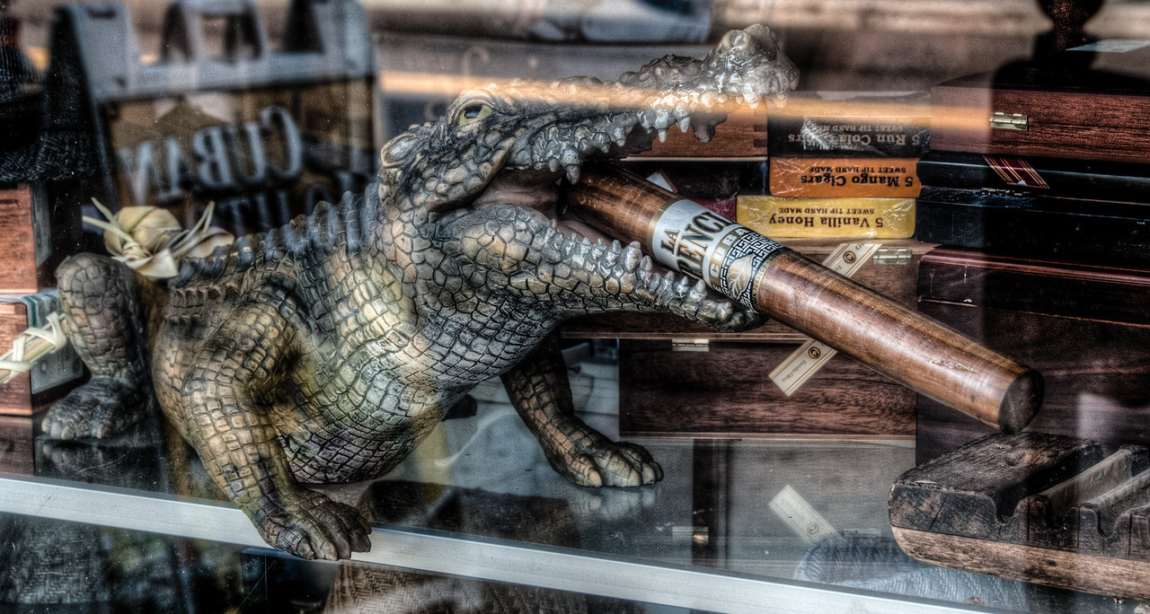 • Location - Ybor City<br /> • I didn't know Alligators smoked cigars.  It must be a Florida Gator, because they can't play football!!!